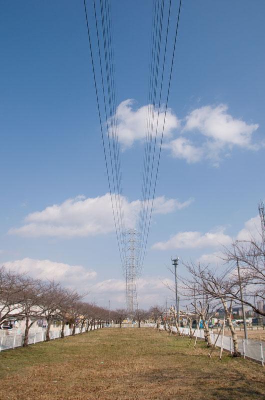 写真:「小松川線11号」へリンク